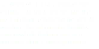 … oodles of creative, strategic and technical chutzpah that ensures the most intelligent, cost-effective results possible – based on agile creativity, solid bizz/tech track records and boatloads of blue-chip experience.